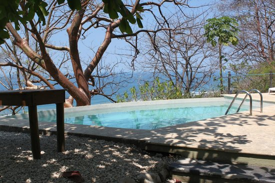 Gumbo Limbo Villas: pool