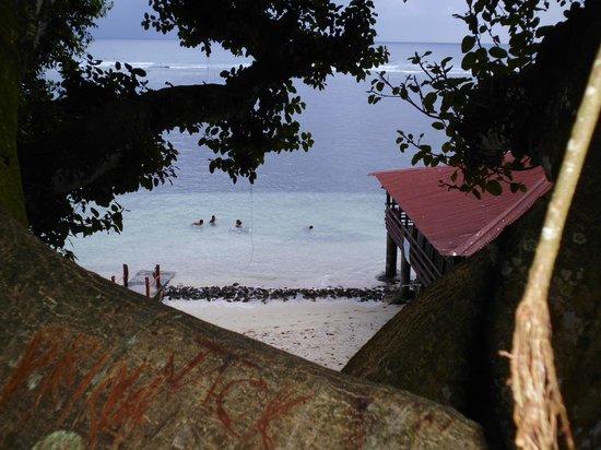 Satuiatua Beach Resort : lagoon fale