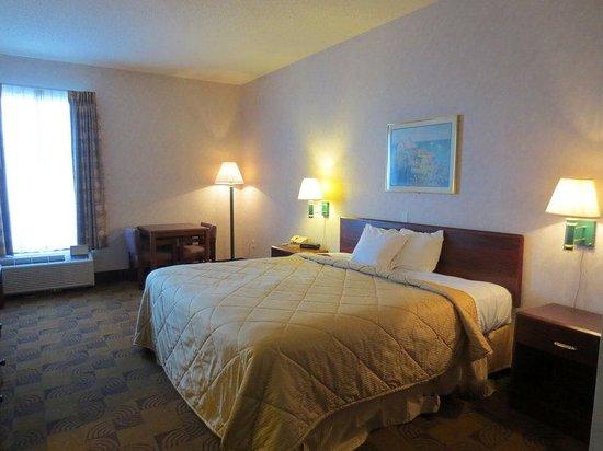 Americas Best Value Inn & Suites- Mount Vernon: King Room