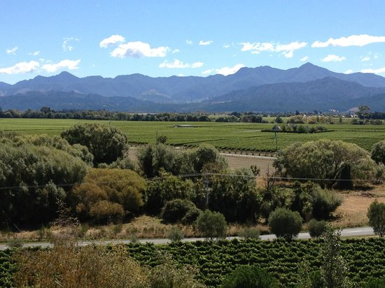 Highfield TerraVin Cellar door and Vineyard Restaurant : View from the terrace