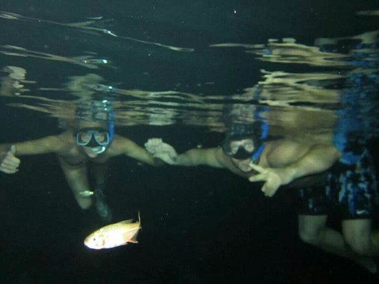 Dreams Tulum Resort & Spa: Snorkeling in the cenote