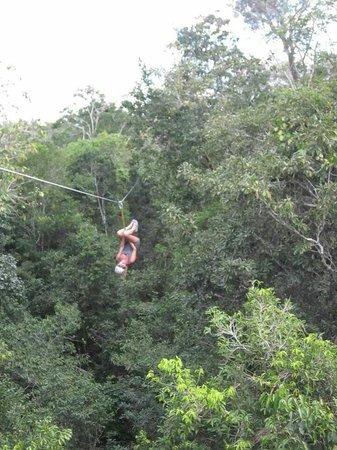 Dreams Tulum Resort & Spa: Ziplining in the jungle
