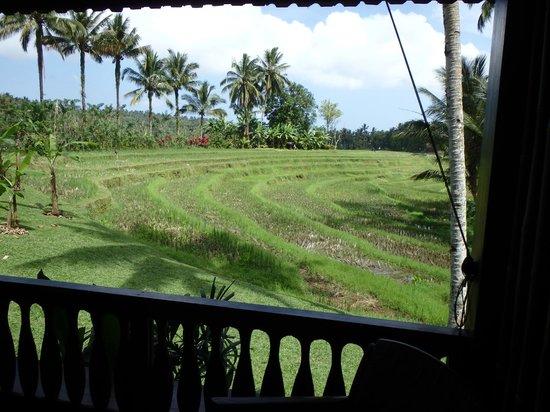 Bali Eco Stay Bungalows : vue de la chambre