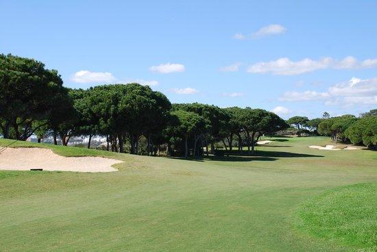 Pine Cliffs Residence : Allée du golf