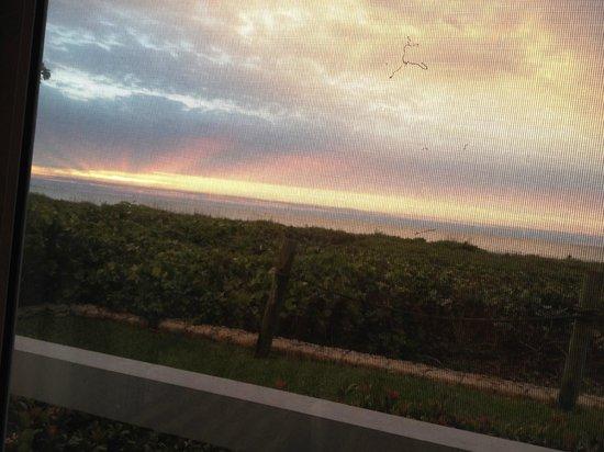 Sanibel Arms Condominiums: more of the sunrise...