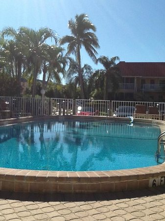 "Sanibel Arms Condominiums: just enjoying this pool....even on cool days the ""ladies"" have this pool nice and warm!!!"