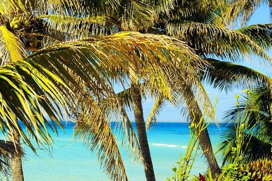 Playa Norte: Sunny