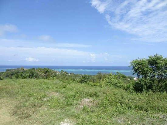 Roatan Christopher Tours: A view of the ocean