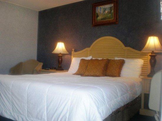 Budgetel Inn & Suites Atlantic City: Guest room