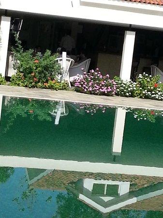 Amanvana Spa Resort, Coorg : Pool