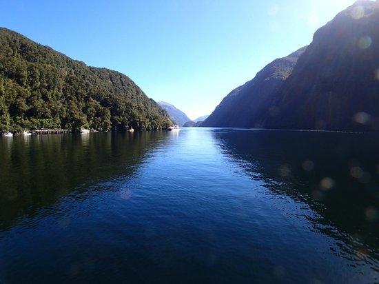 Looking up Doubtful Sound