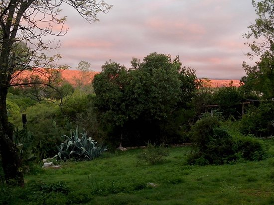 Costa Serrana: Desde el parque