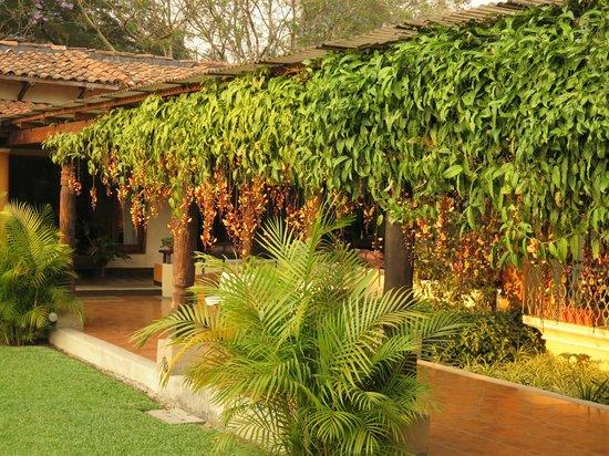 Casa Santa Rosa Hotel Boutique: Walkway