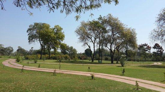 Garden surrounding Rani ki vav