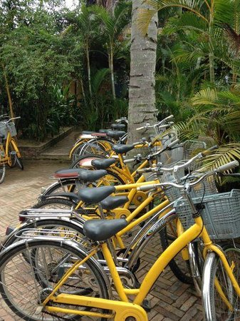Ha An Hotel : Free bikes that are fun to ride!