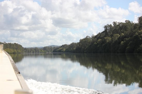 Port Macquarie Cruise Adventures: Eco Cruise  - 6 hours well spent