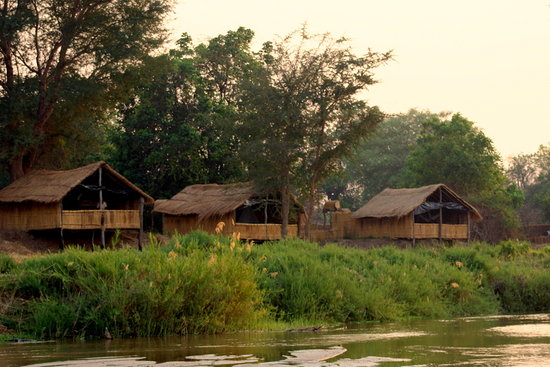 Buffalo Camp: The Chalets straddle the banks of the Mwaleshi River