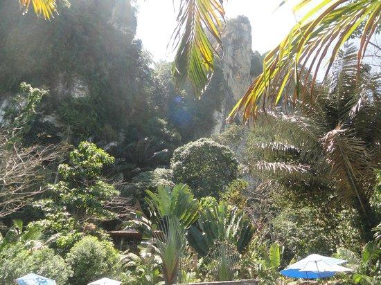 Aonang Cliff View Resort : Cliifs behind Pool