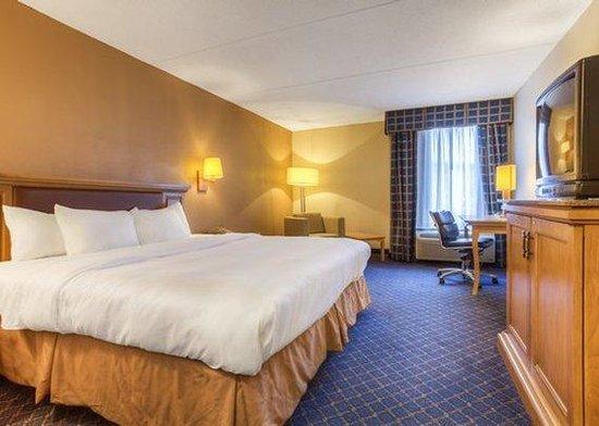 Atria Inn & Suites: King Room