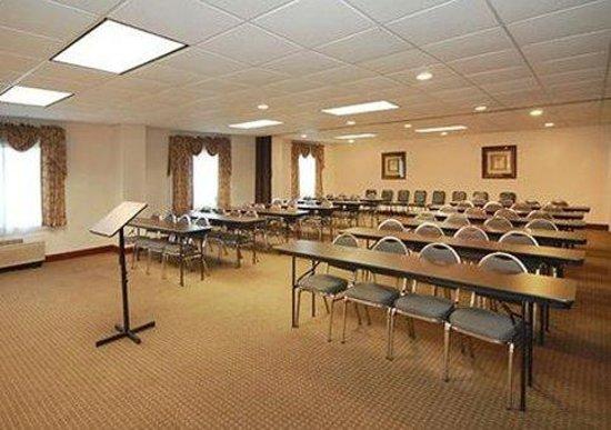 Comfort Inn & Suites Sugarloaf-Suwanee: Meeting Room