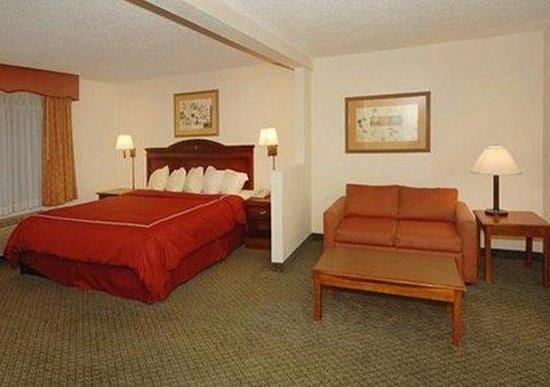 Comfort Inn & Suites Sugarloaf-Suwanee: Guest Room