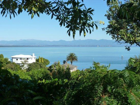 Te Puna Wai Lodge: view 1 from courtyard