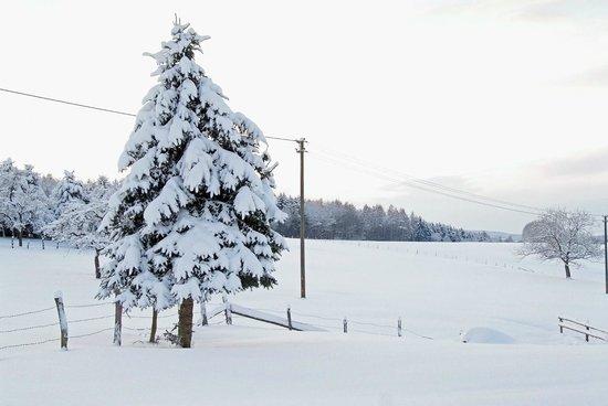 Hotel Ambiente : Winterladschaft
