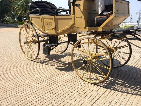 Taj Falaknuma Palace: Horse Carriage