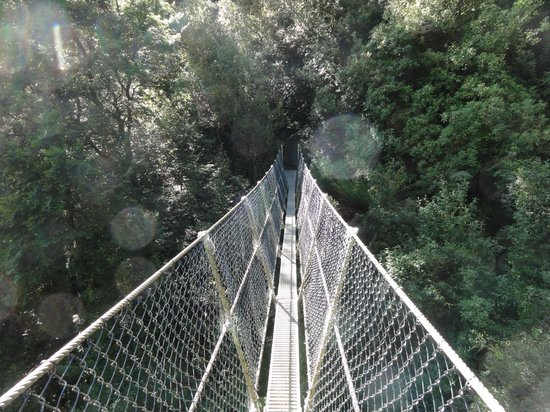 Montezuma Falls: The narrow suspension bridge