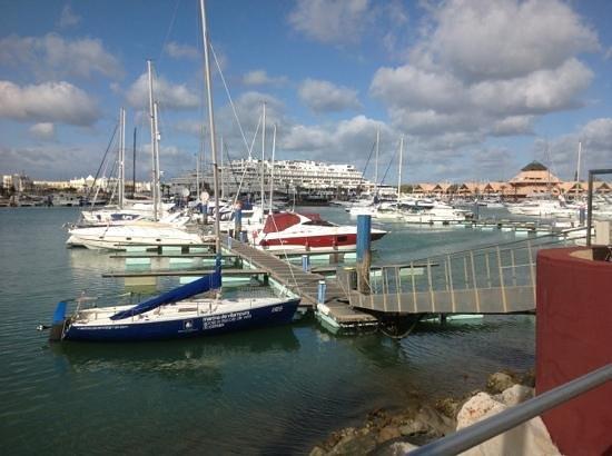 Hilton Vilamoura As Cascatas Golf Resort & Spa: Marina