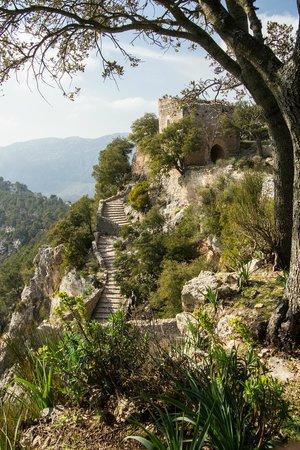 Castell d Alaro: Castle