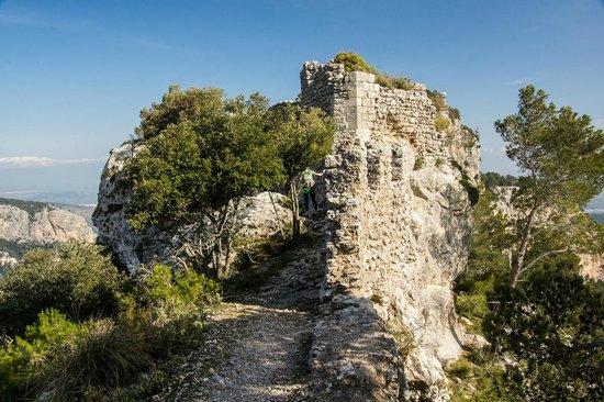 Castell d Alaro : Castle