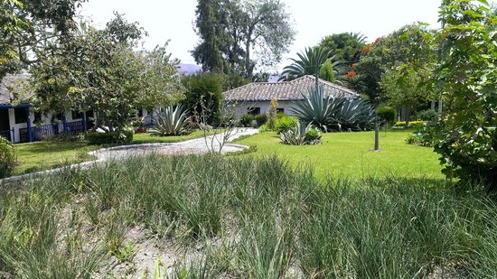 Hacienda- Hosteria Chorlavi: Garden
