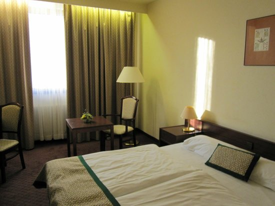 Hotel Hungaria City Center: Room 2