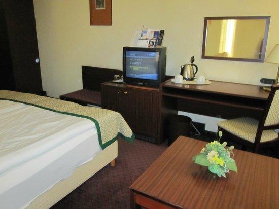 Hotel Hungaria City Center: Room 1