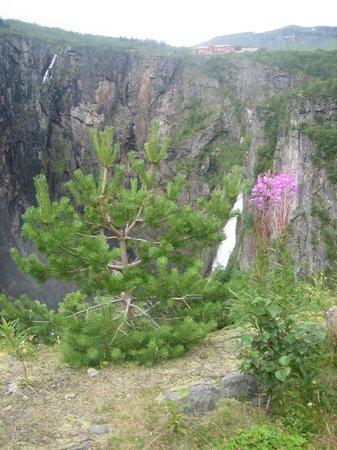 Hardangervidda National Park: Высокогорное плато Хардангервидда
