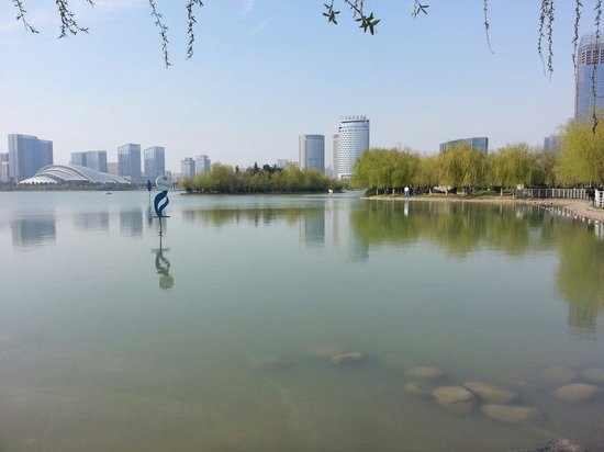 Hefei Swan Lake: 天鵝湖
