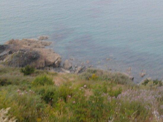 Pointe du Roselier : entre terre et mer...