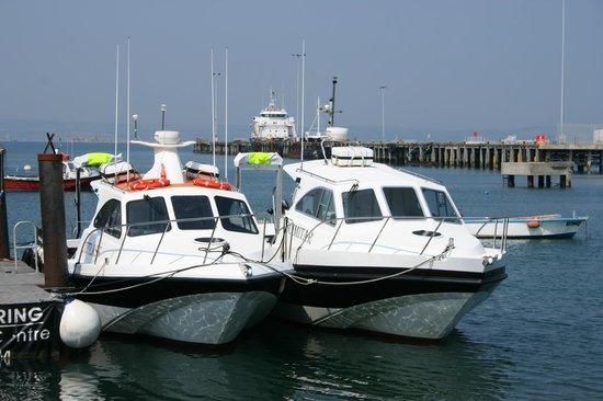 Scimitar Diving: The boats.