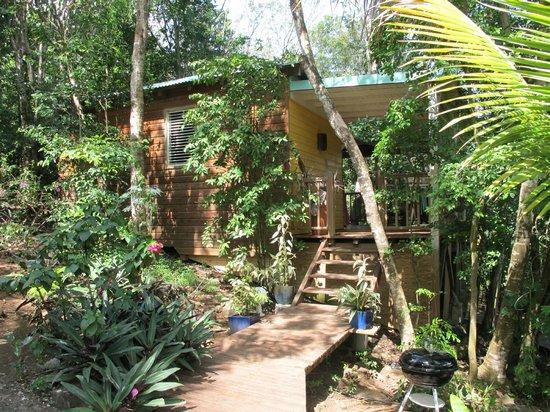 L 39 entr e de la cabane dans les arbres picture of au for Au jardin review