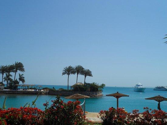 Hurghada Marriott Beach Resort : View from the beach
