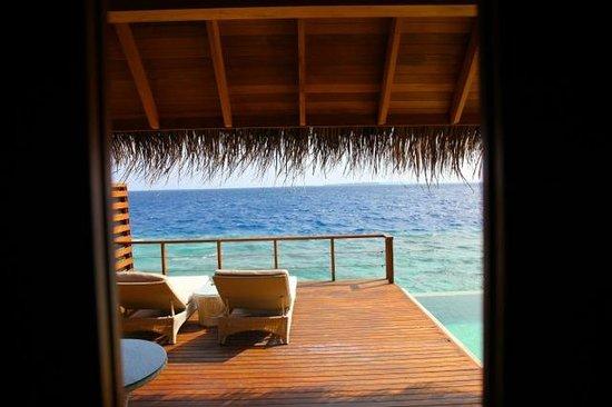 Dusit Thani Maldives: Water Villa