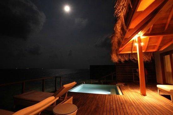 Dusit Thani Maldives: Private Infinite Pool at Night