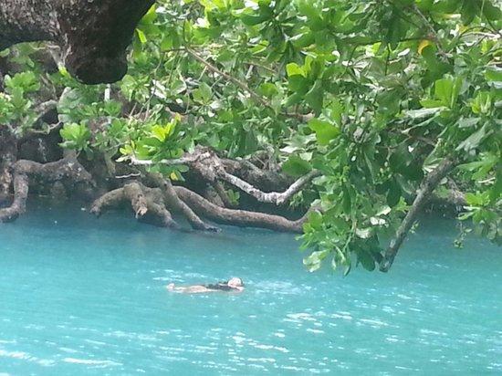 Warwick Le Lagon - Vanuatu: The Blue Lagoon Vanuatu
