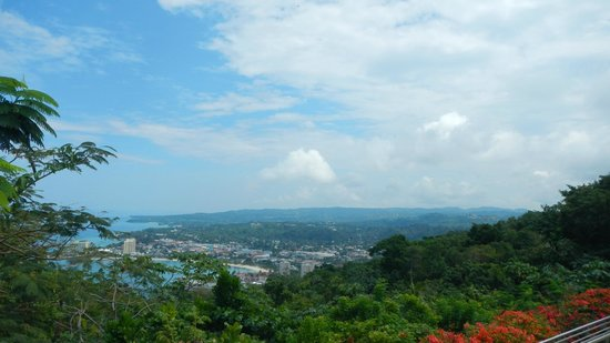 Rainforest Adventures Jamaica : A View From the Top