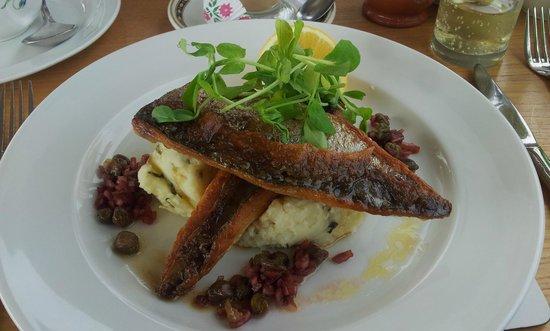 Marina Restaurant : Torbay mackerell - delicious!