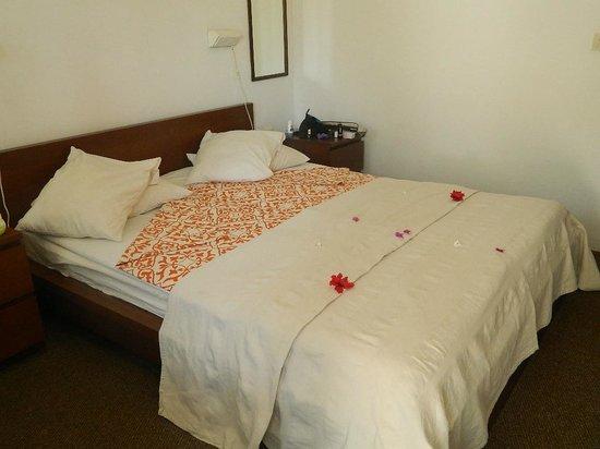 Bakotu Hotel: Our room