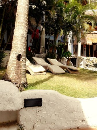 Dolphinbay Beachfront  & Dive Resort: pool area
