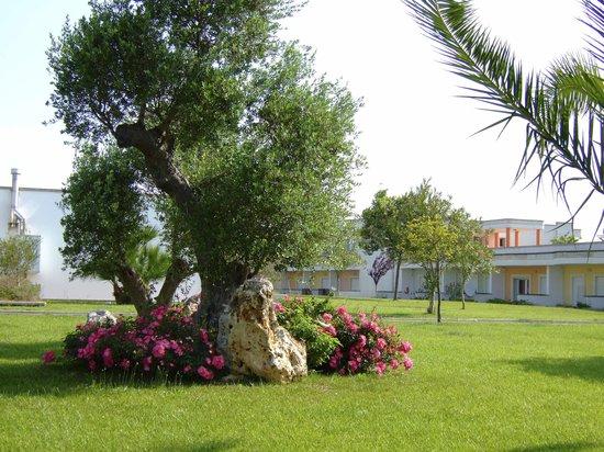 Merine Apulia, Italie : tanto verde e natura lussureggianti...