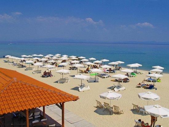 Alexander The Great Beach Hotel: Our Blue Flag awarded amazing beach